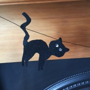 HAL CAT